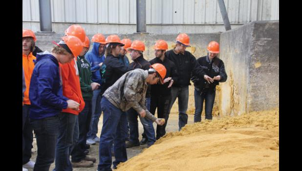 Students get to see and feel the texture of wet distillers grain.